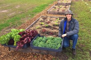 Volunteer Connor St. George with new crops at White Harvest Farm
