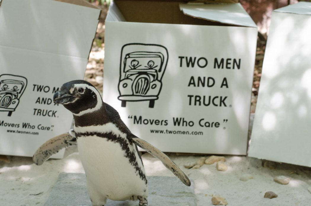 TWO MEN AND A TRUCK® Jacksonville is partnering with the Jacksonville Zoo and Gardens to host its Movers for Moms® collection drive to provide critical gifts to local women staying in community shelters this spring.